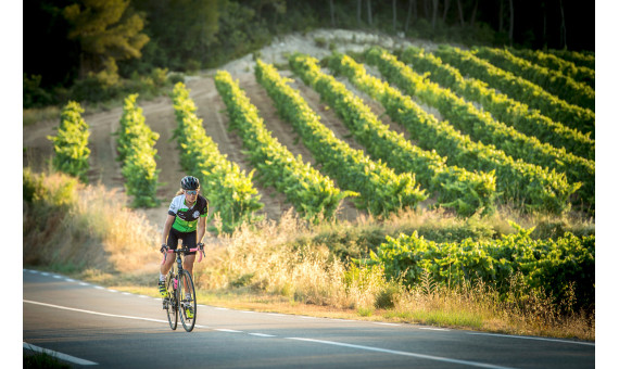 Penedes Road Cycling around vineyards